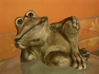 Žába Pohoda ležící