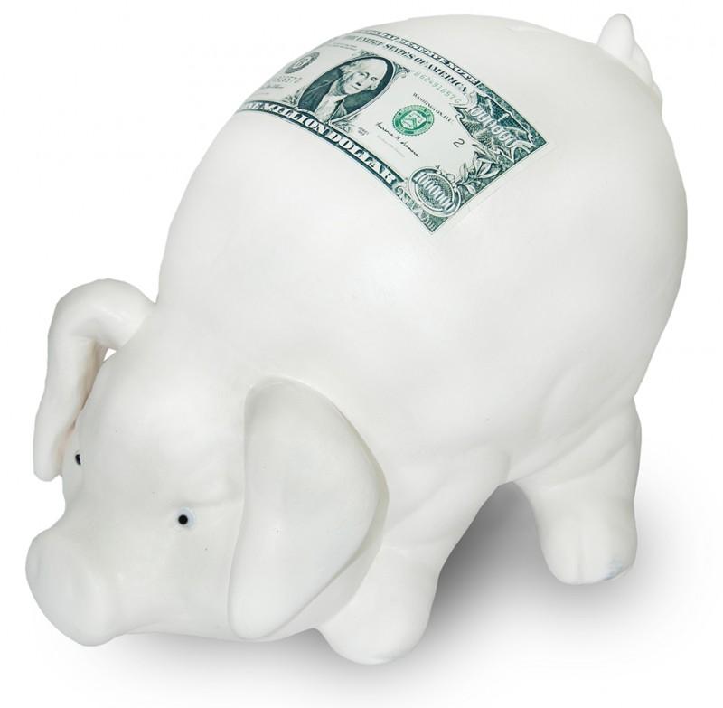 Pokladnička Prasátko bílé Dolar