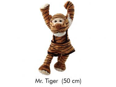 Mr. Tiger